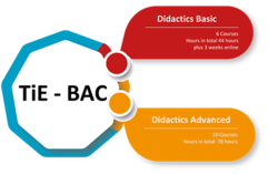 Grafik TiE-BAC: Teaching in Englisch - Basic and Advanced Courses
